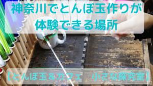 神奈川でとんぼ玉作りが 体験できる場所